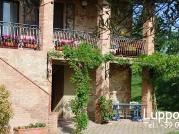 Villa in vendita a Pienza, Con giardino, 200 mq - Foto 9