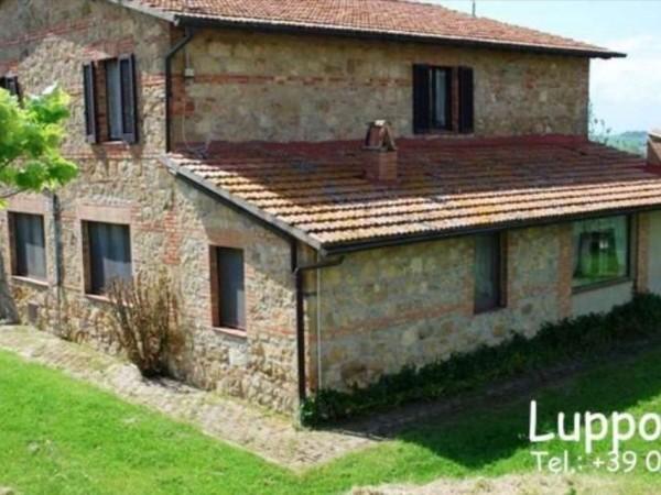Villa in vendita a Pienza, Con giardino, 200 mq