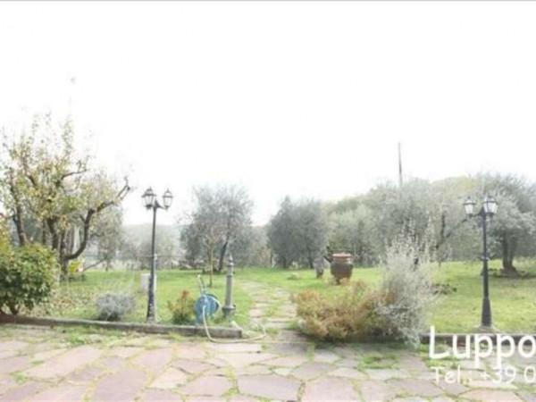 Villa in vendita a Siena, Con giardino, 135 mq - Foto 3