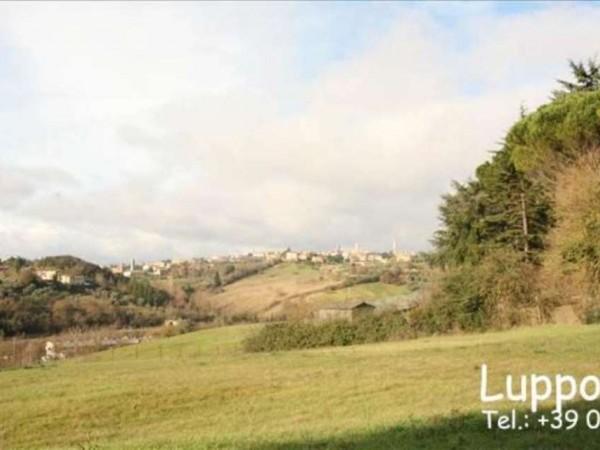 Villa in vendita a Siena, Con giardino, 400 mq - Foto 7