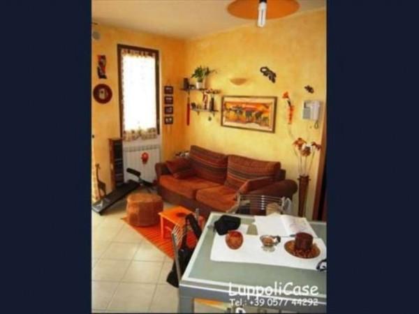Appartamento in vendita a Sovicille, 50 mq - Foto 5