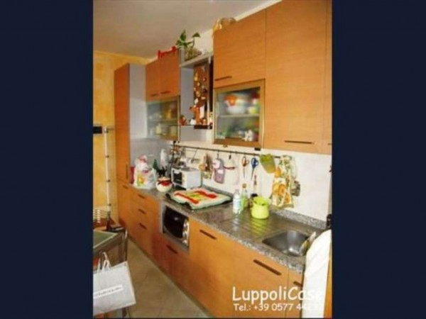Appartamento in vendita a Sovicille, 50 mq - Foto 6
