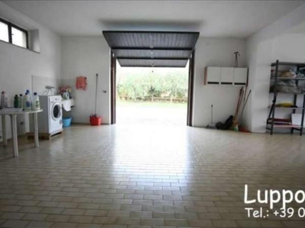 Villa in vendita a Castelnuovo Berardenga, Con giardino, 360 mq - Foto 14