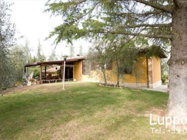 Villa in vendita a Castelnuovo Berardenga, Con giardino, 360 mq - Foto 19