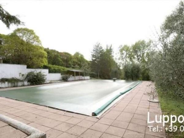 Villa in vendita a Castelnuovo Berardenga, Con giardino, 360 mq - Foto 21