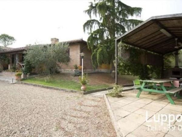 Villa in vendita a Castelnuovo Berardenga, Con giardino, 360 mq - Foto 20