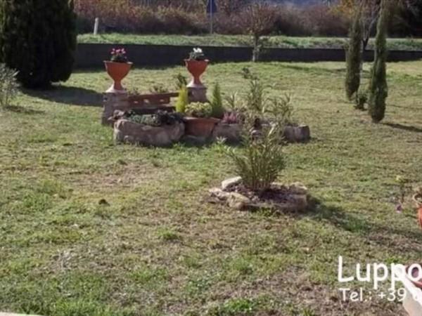Villa in vendita a Monticiano, Con giardino, 330 mq