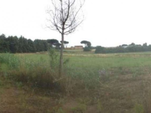 Villa in vendita a Roma, Ardeatina, Con giardino, 200 mq - Foto 7