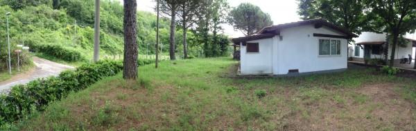 Villa in vendita a Velletri, Ospedale San Raffaele, Arredato, con giardino, 300 mq - Foto 3