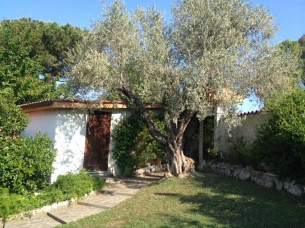 Villa in affitto a Roma, Casale Lumbroso, Con giardino, 200 mq - Foto 18