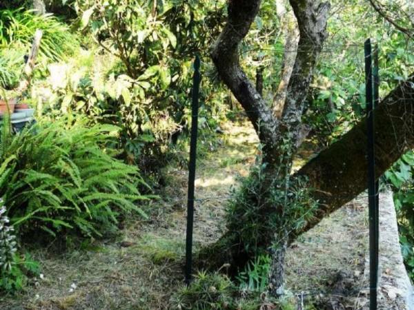 Appartamento in vendita a Pieve Ligure, Pieve Alta, Con giardino, 100 mq - Foto 15