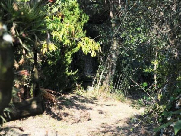 Appartamento in vendita a Pieve Ligure, Pieve Alta, Con giardino, 100 mq - Foto 17
