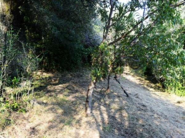 Appartamento in vendita a Pieve Ligure, Pieve Alta, Con giardino, 100 mq - Foto 14