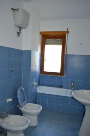 Appartamento in vendita a Roma, Torrino, Con giardino, 50 mq - Foto 8