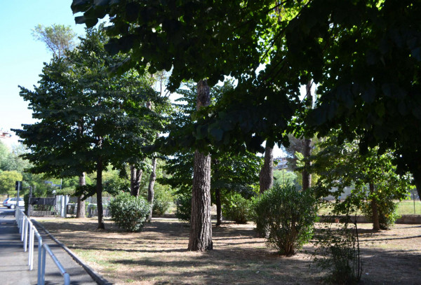 Appartamento in vendita a Roma, Torrino, Con giardino, 50 mq - Foto 3