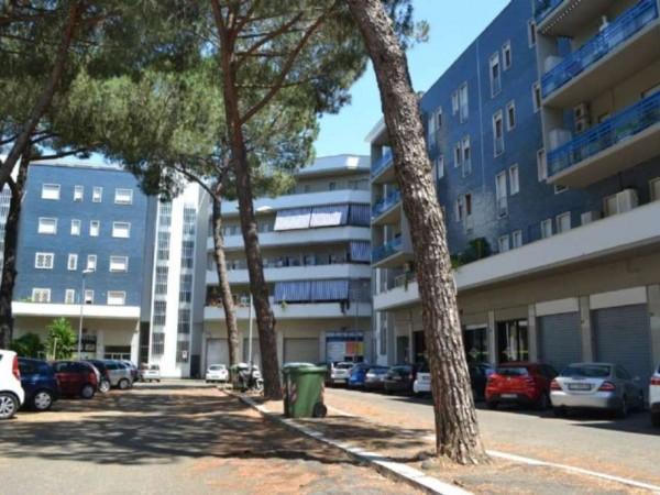 Appartamento in vendita a Roma, Mostacciano, Con giardino, 66 mq