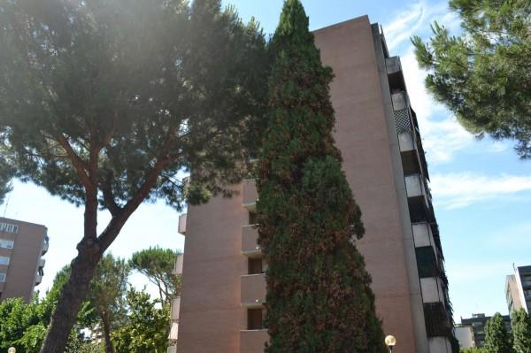 Appartamento in vendita a Roma, Torrino, Con giardino, 60 mq - Foto 4
