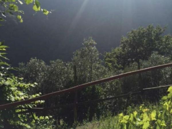 Casa indipendente in vendita a Avegno, Con giardino, 240 mq - Foto 12