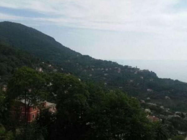 Appartamento in vendita a Camogli, Con giardino, 65 mq