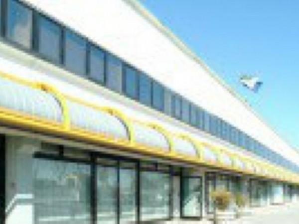 Ufficio in vendita a Casarsa della Delizia, 11800 mq