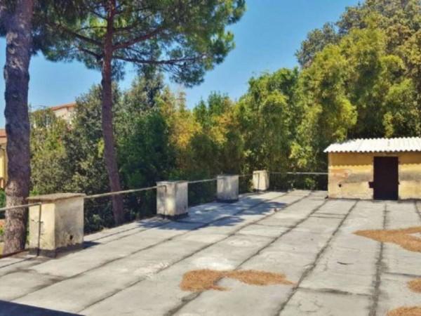 Immobile in vendita a Pisa, Piazza Dei Miracoli, Con giardino, 1600 mq - Foto 60