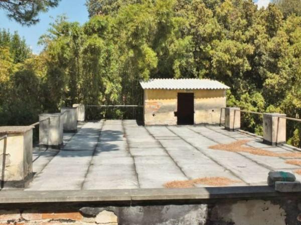 Immobile in vendita a Pisa, Piazza Dei Miracoli, Con giardino, 1600 mq - Foto 38