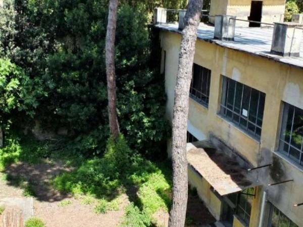 Immobile in vendita a Pisa, Piazza Dei Miracoli, Con giardino, 1600 mq - Foto 30