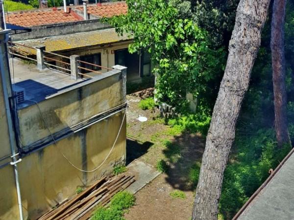 Immobile in vendita a Pisa, Piazza Dei Miracoli, Con giardino, 1600 mq - Foto 63
