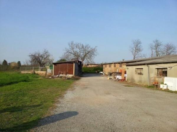 Capannone in vendita a Forlì, 1500 mq - Foto 5