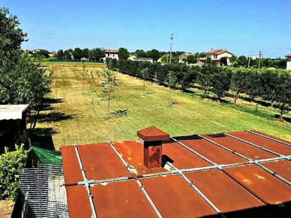 Casa indipendente in vendita a Forlì, Carpinello, Con giardino, 120 mq - Foto 4
