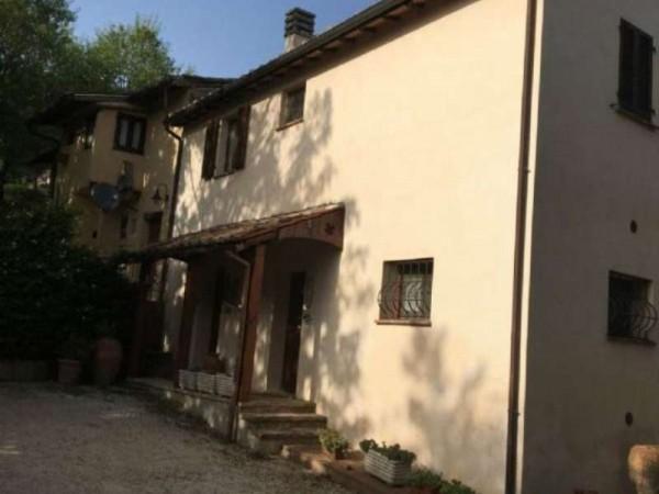 Rustico/Casale in affitto a Perugia, Arredato, con giardino, 40 mq - Foto 20