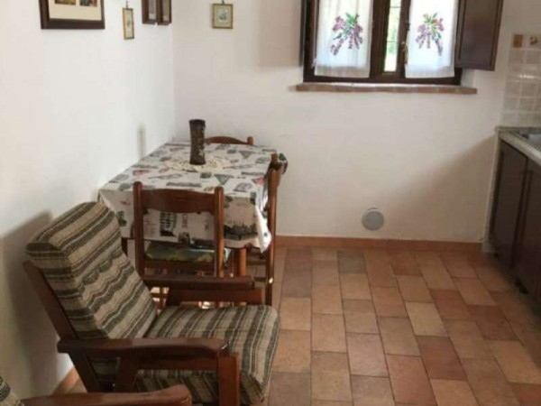 Rustico/Casale in affitto a Perugia, Arredato, con giardino, 40 mq - Foto 6