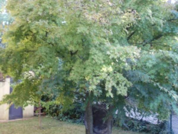 Villa in affitto a Perugia, Con giardino, 100 mq - Foto 11