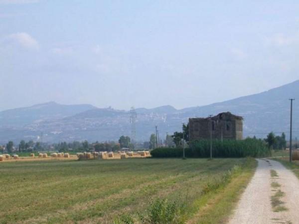 Rustico/Casale in vendita a Cannara, 450 mq - Foto 11