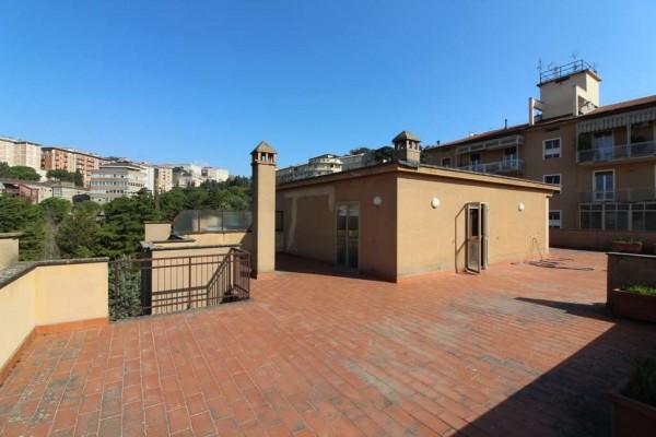 Locale Commerciale  in vendita a Perugia, Filosofi, Con giardino, 260 mq - Foto 2