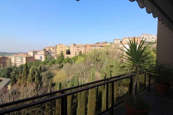 Locale Commerciale  in vendita a Perugia, Filosofi, Con giardino, 260 mq - Foto 4