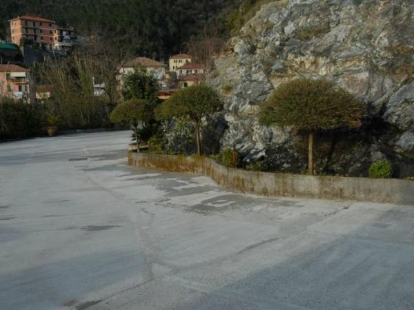 Locale Commerciale  in vendita a Casarza Ligure, Collinare, Arredato, 550 mq - Foto 4