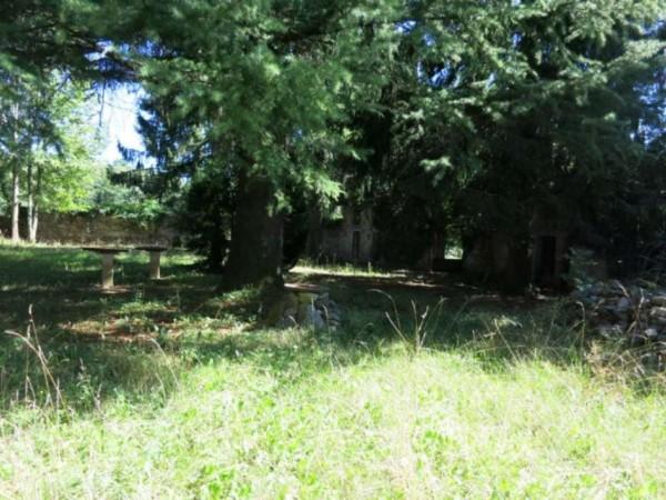Rustico/Casale in vendita a Moruzzo, Con giardino, 700 mq - Foto 3