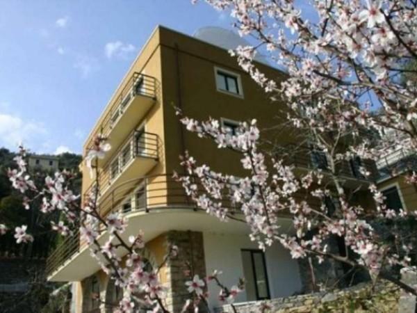 Appartamento in vendita a Zoagli, Con giardino, 120 mq - Foto 3