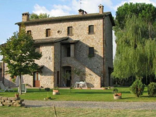 Rustico/Casale in vendita a Ficulle, Con giardino, 450 mq - Foto 10