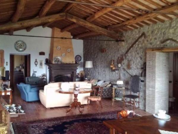 Rustico/Casale in vendita a Ficulle, Con giardino, 450 mq - Foto 2