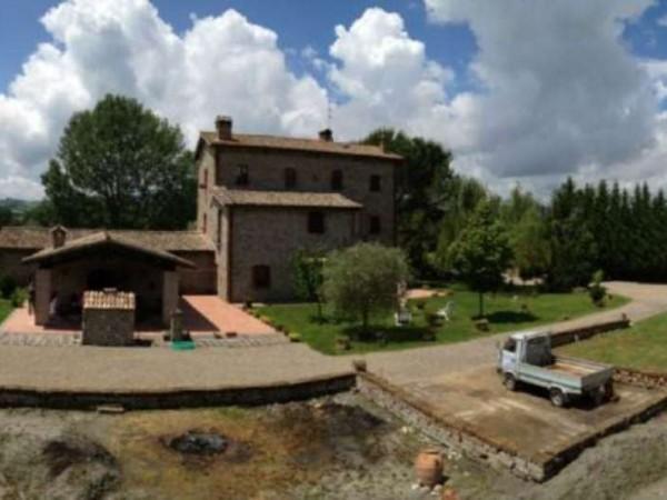Rustico/Casale in vendita a Ficulle, Con giardino, 450 mq - Foto 11