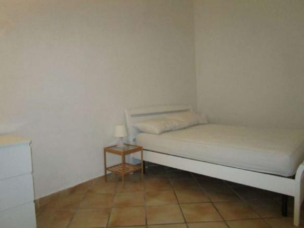 Appartamento in affitto a Castagneto Carducci, Arredato, 32 mq - Foto 11