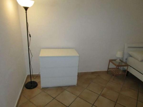 Appartamento in affitto a Castagneto Carducci, Arredato, 32 mq - Foto 6