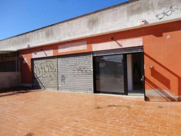 Negozio in vendita a Ardea, Tor San Lorenzo, Con giardino, 82 mq - Foto 3