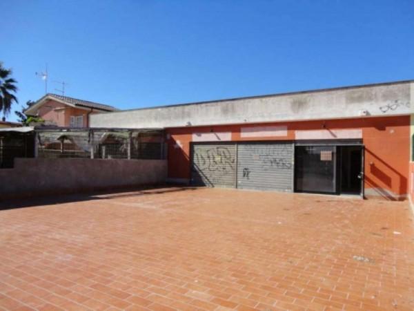 Negozio in vendita a Ardea, Tor San Lorenzo, Con giardino, 82 mq - Foto 12
