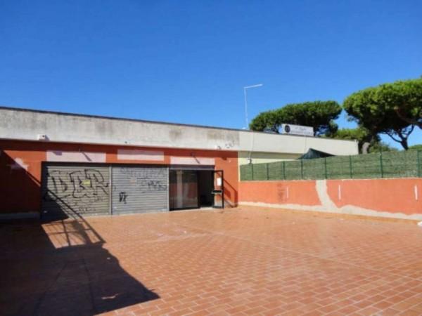 Negozio in vendita a Ardea, Tor San Lorenzo, Con giardino, 82 mq