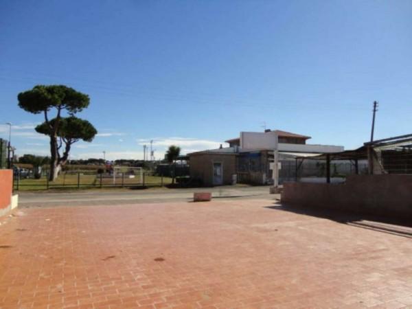 Negozio in vendita a Ardea, Tor San Lorenzo, Con giardino, 82 mq - Foto 5