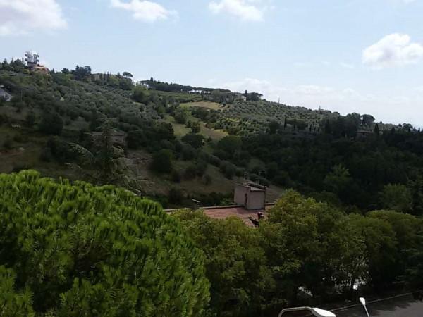 Quadrilocale in affitto a Perugia, San Marco, Arredato, 120 mq - Foto 2
