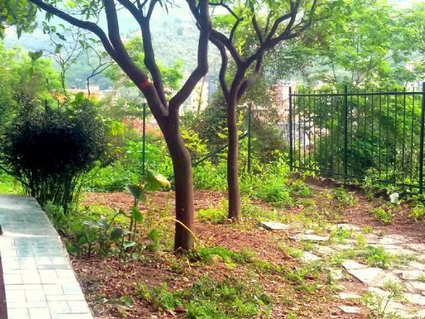 Appartamento in vendita a Recco, Montefiorito, Con giardino, 45 mq - Foto 11
